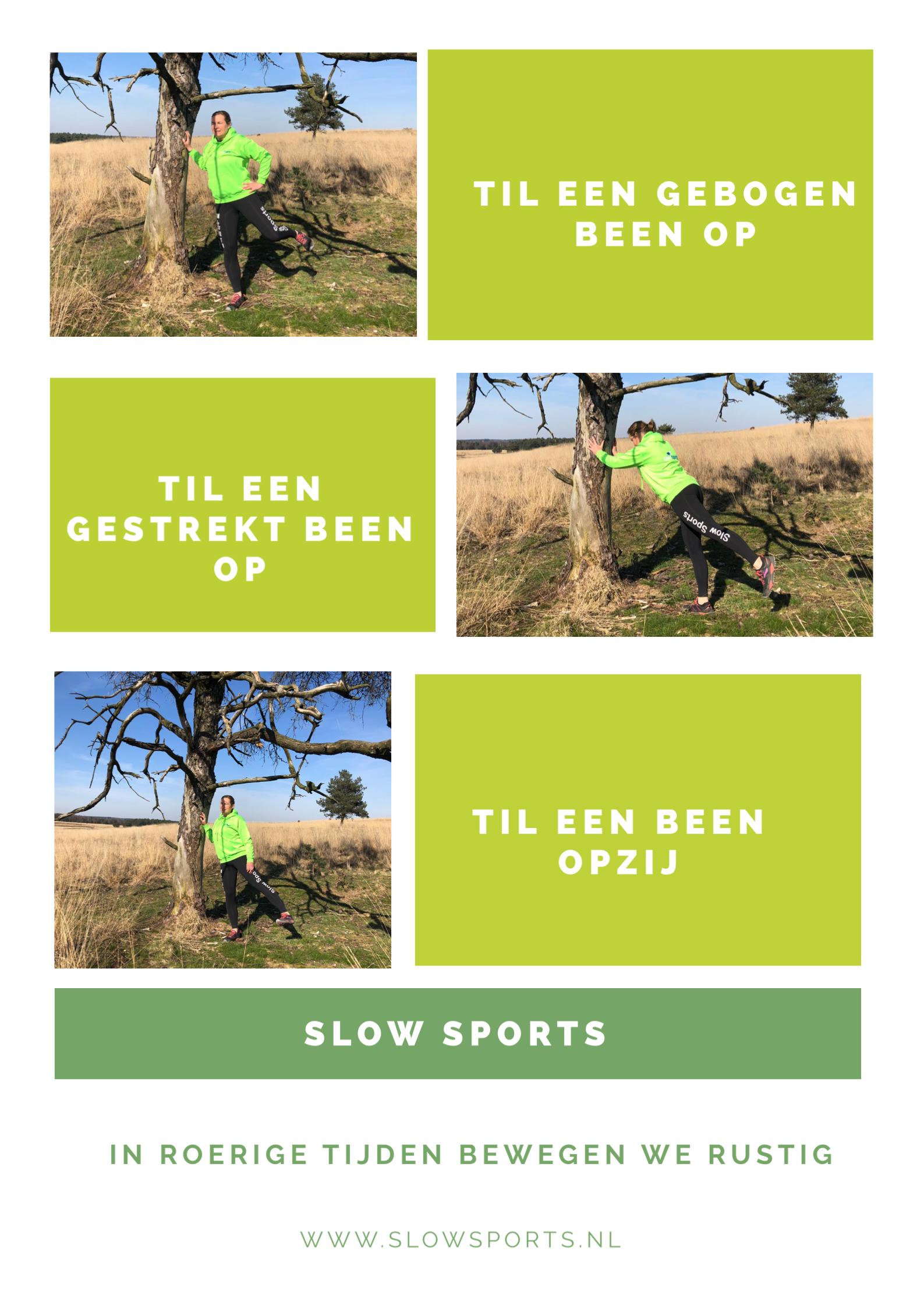 Slowsports Biddinghuizen